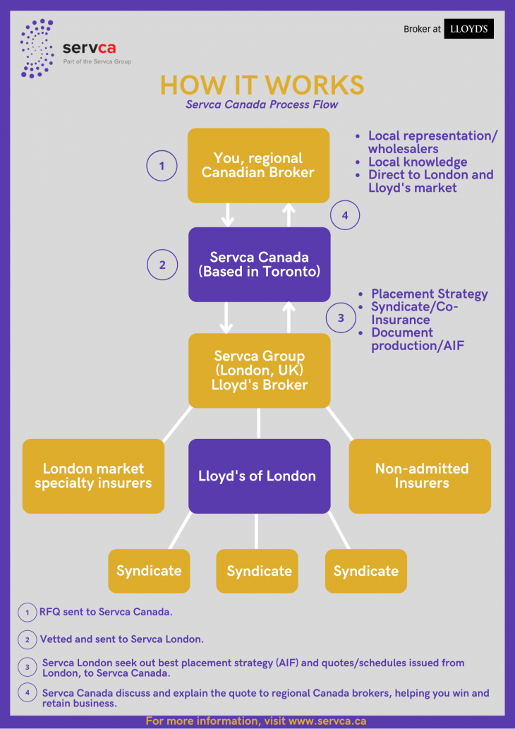 How It Works - Servca CA's Process Flow Infographic